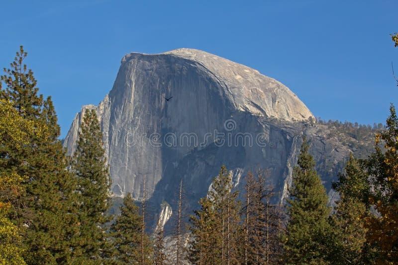 Μνημειακός μισός θόλος στο εθνικό πάρκο Yosemite σε Καλιφόρνια στοκ φωτογραφία με δικαίωμα ελεύθερης χρήσης