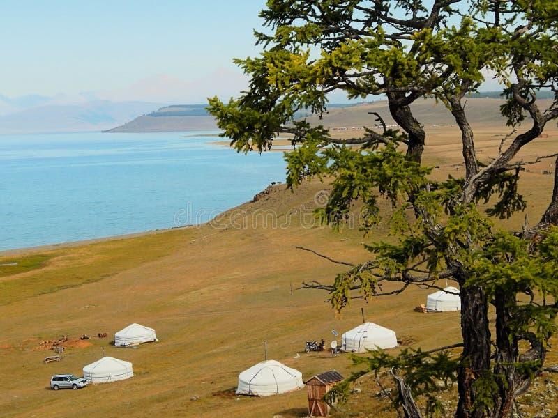Μογγολικά yurts στην ακτή της λίμνης Khubsugul στοκ εικόνες