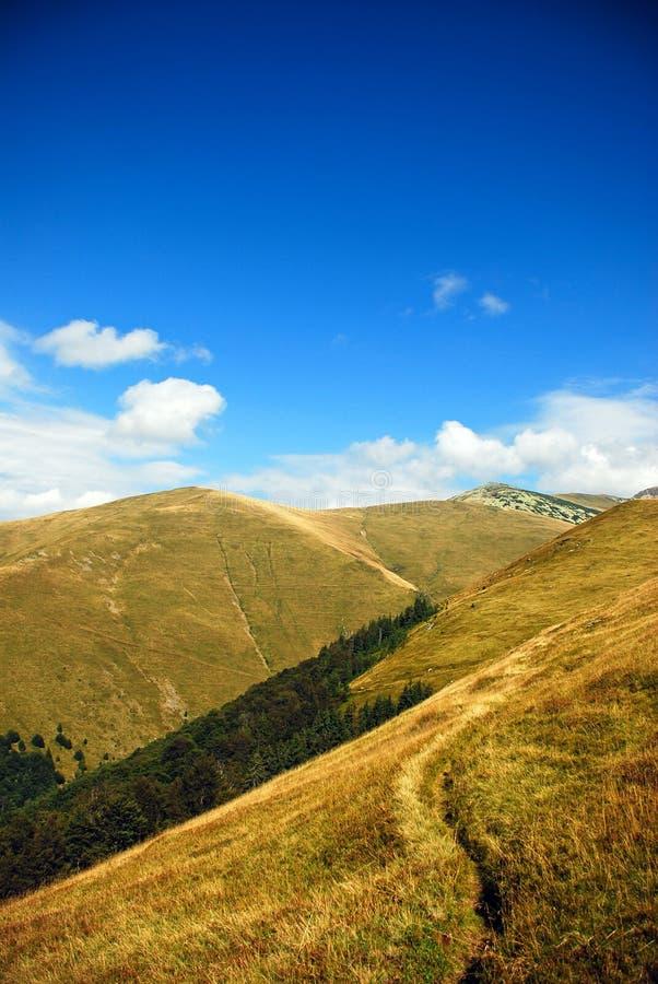 μονοπάτι βουνών τοπίων στοκ φωτογραφία με δικαίωμα ελεύθερης χρήσης