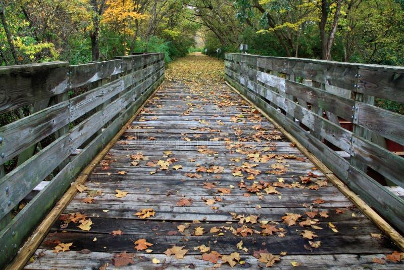 μονοπάτι γεφυρών ποδηλάτω στοκ εικόνες