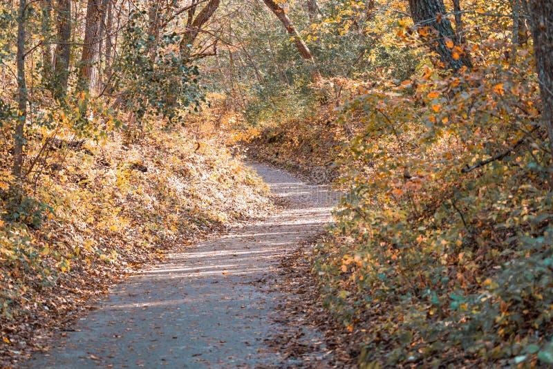 Μονοπάτι πεζοπορίας στο Πάρκο Ουίλοου Ρίβερ στο Χάντσον Γουισκόνσιν στοκ εικόνα με δικαίωμα ελεύθερης χρήσης