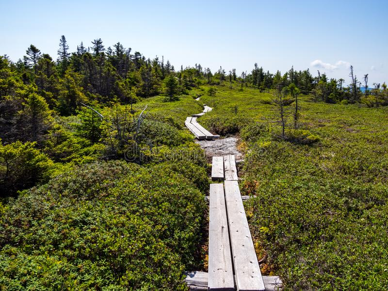 Μονοπάτι πινάκων ελών μέσω της αλπικής έκτασης βουνών στοκ φωτογραφία με δικαίωμα ελεύθερης χρήσης