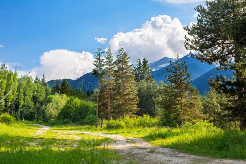 Μονοπάτι στα δάση Βουνά, σύννεφα και πράσινος στοκ εικόνα