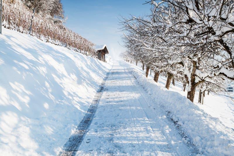 Μονοπάτι στη χειμερινή εποχή στοκ φωτογραφία με δικαίωμα ελεύθερης χρήσης
