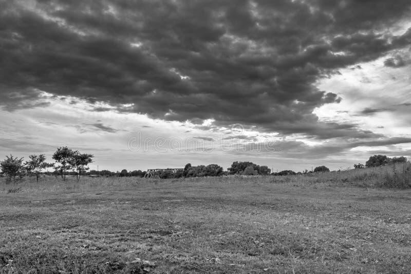 μονοχρωματική εικόνα Θλιβερός ουρανός πέρα από το ανθίζοντας λιβάδι Bogolyubovo, περιοχή του Βλαντιμίρ, της Ρωσίας στοκ φωτογραφία με δικαίωμα ελεύθερης χρήσης