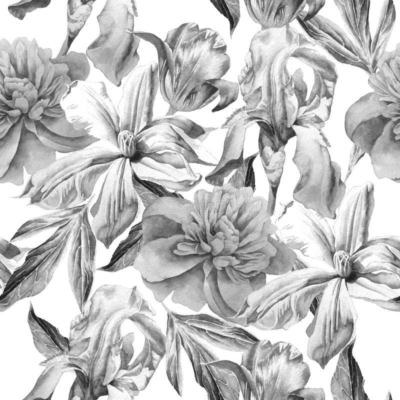 Μονοχρωματικό άνευ ραφής σχέδιο με τα λουλούδια άνοιξη Peony clematis Τουλίπα ίριδα watercolor απεικόνιση αποθεμάτων