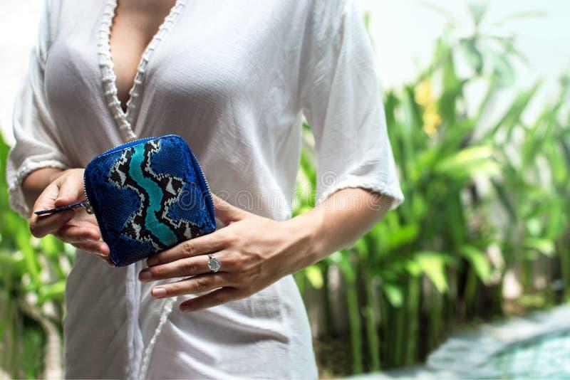 Μοντέρνα θηλυκά χέρια που κρατούν το πορτοφόλι πολυτέλειας snakeskin python Μοντέρνο εξάρτημα γυναικών Μοντέρνα εξαρτήματα, μπλε στοκ φωτογραφία