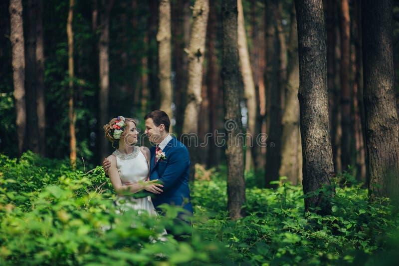 Μοντέρνοι νέοι νύφη και νεόνυμφος πολυτέλειας στο ελατήριο SU υποβάθρου στοκ εικόνα