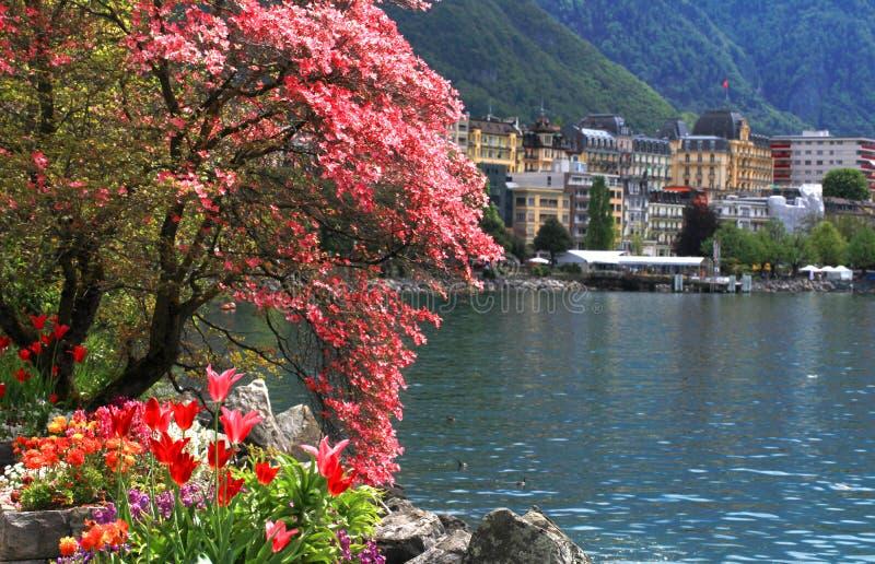 Μοντρέ και λίμνη Γενεύη, Ελβετία. στοκ εικόνα με δικαίωμα ελεύθερης χρήσης