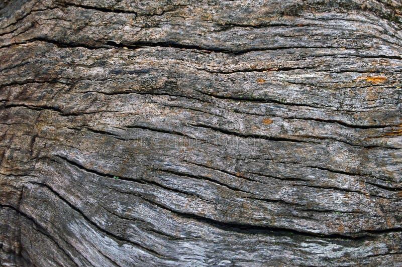 Μοτίβο υφής ραγισμένο παλιό ξύλινο φόντο στοκ εικόνες