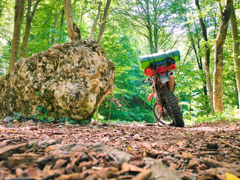 Μοτοσικλέτα που στέκεται στα ξύλα στοκ φωτογραφία με δικαίωμα ελεύθερης χρήσης