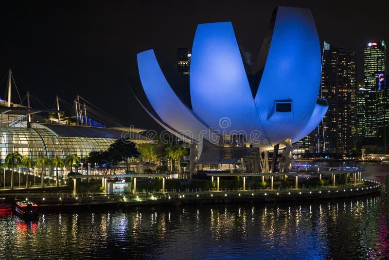 Μουσείο επιστήμης τέχνης της Σιγκαπούρης τη νύχτα στοκ φωτογραφία με δικαίωμα ελεύθερης χρήσης