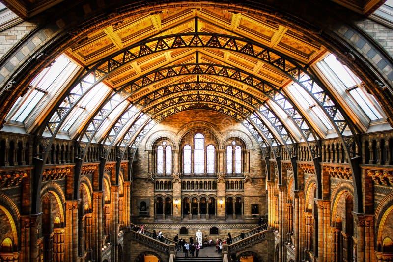 Μουσείο της φυσικής ιστορίας Λονδίνο στοκ εικόνες