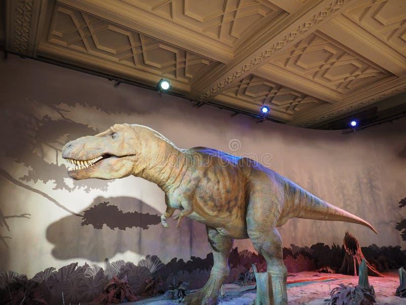 μουσείο του Λονδίνου ιστορίας φυσικό στοκ εικόνες