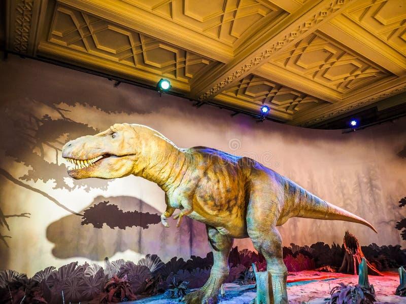 Μουσείο φυσικής ιστορίας στο Λονδίνο, hdr στοκ εικόνα