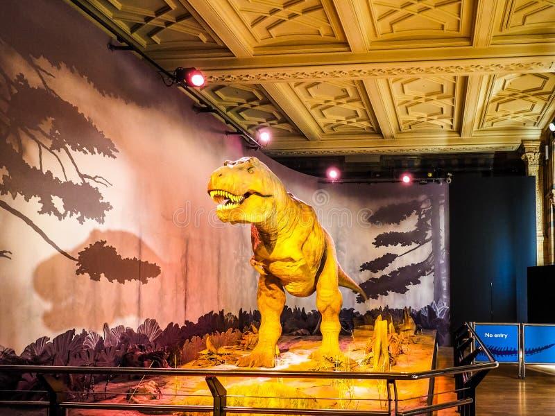 Μουσείο φυσικής ιστορίας στο Λονδίνο, hdr στοκ εικόνες