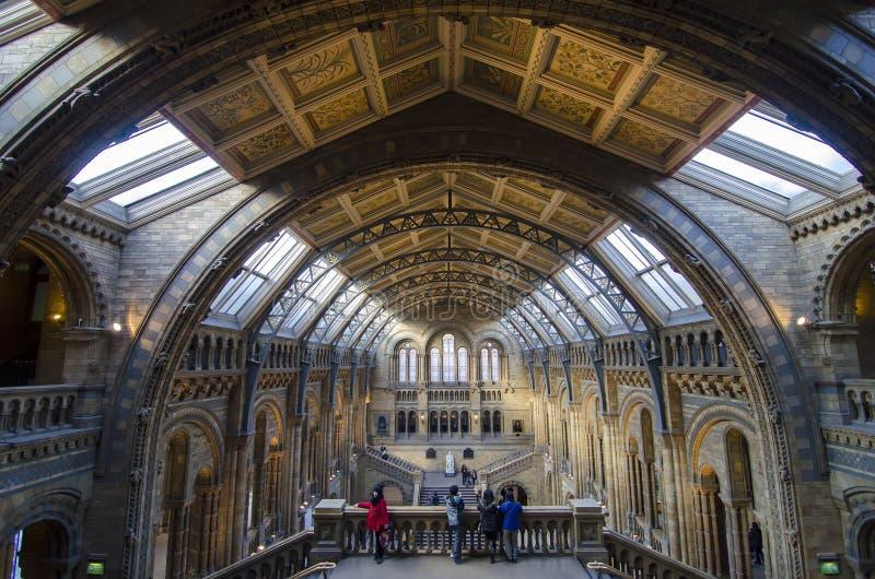 Μουσείο φυσικής ιστορίας στοκ εικόνες