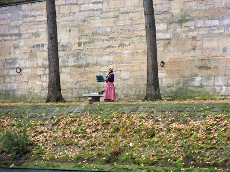 Μουσικός απόμερος κατά μήκος του Σηκουάνα στοκ εικόνες με δικαίωμα ελεύθερης χρήσης
