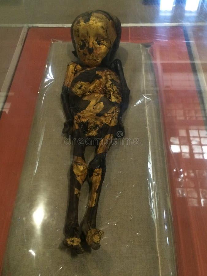 Μούμια παιδιών Το εθνικό αρχαιολογικό μουσείο της Αιγύπτου στοκ φωτογραφία