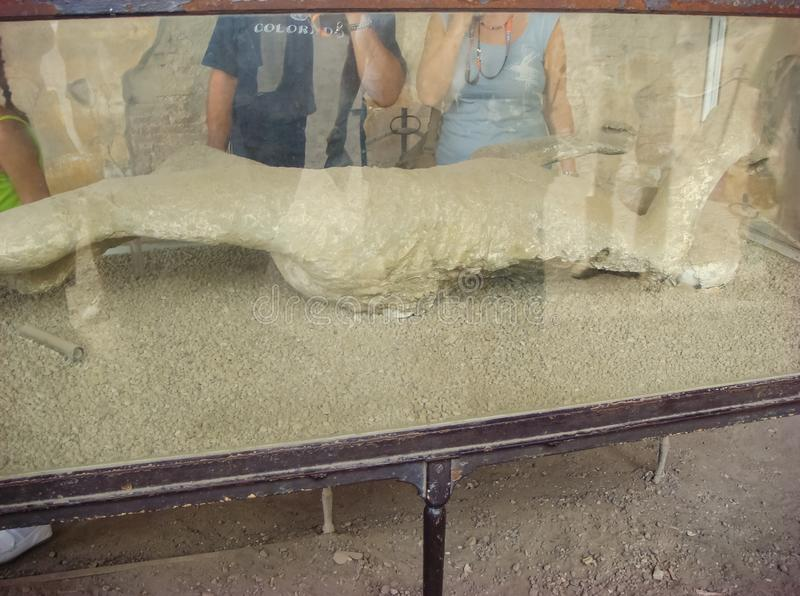 Μούμια στο μουσείο της Πομπηίας στοκ εικόνες με δικαίωμα ελεύθερης χρήσης