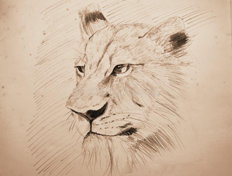 Μολύβι πορτρέτου προσώπου λιονταριών που σκιαγραφεί σε παλαιό χαρτί με τον τόνο σεπιών διανυσματική απεικόνιση