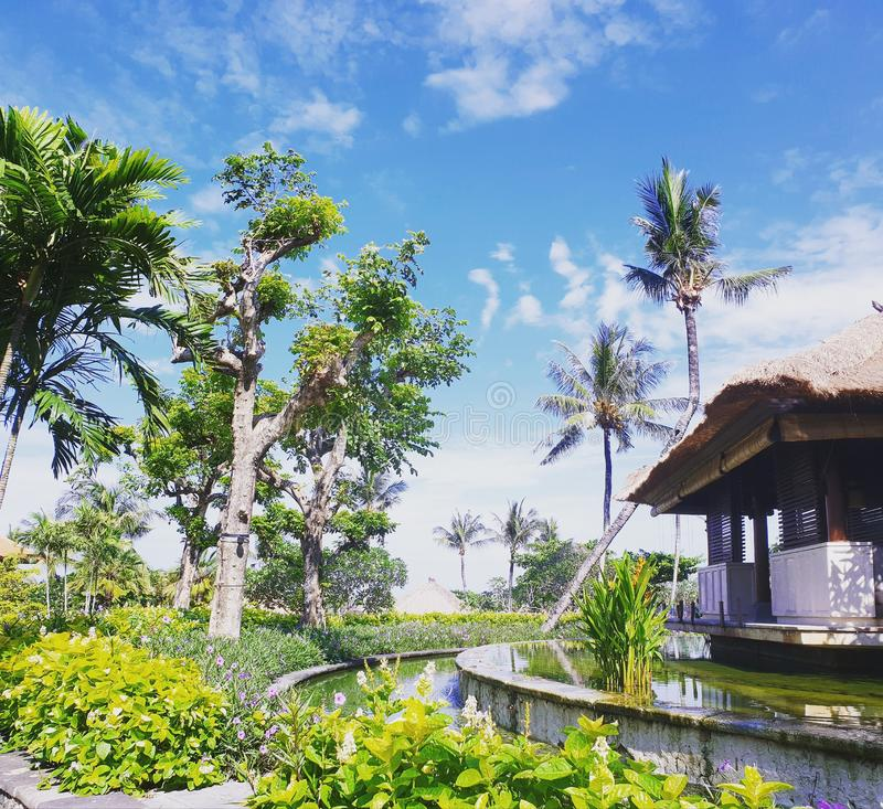 Μπαλί Ινδονησία στοκ εικόνα με δικαίωμα ελεύθερης χρήσης