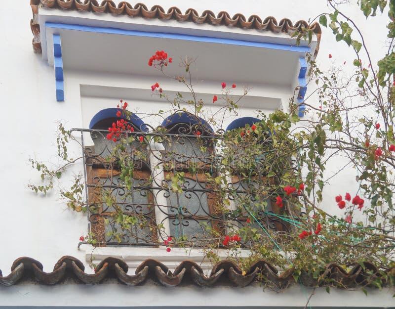 Μπαλκόνι σπιτιών στην μπλε πόλη - Chefchaouen, Μαρόκο στοκ φωτογραφία με δικαίωμα ελεύθερης χρήσης