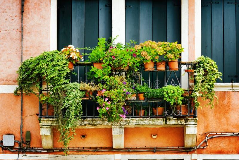 Μπαλκόνι του παλαιού σπιτιού που διακοσμείται με τα λουλούδια, Βενετία, Ιταλία στοκ φωτογραφία