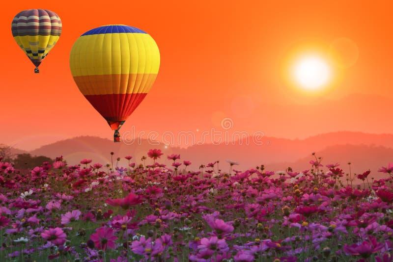 Μπαλόνια ζεστού αέρα πέρα από το λουλούδι κόσμου στο ηλιοβασίλεμα με τη φλόγα στοκ εικόνες