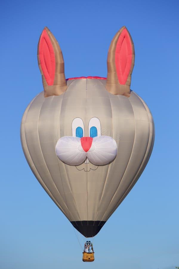 Μπαλόνι κουνελιών αύξησης στοκ εικόνες