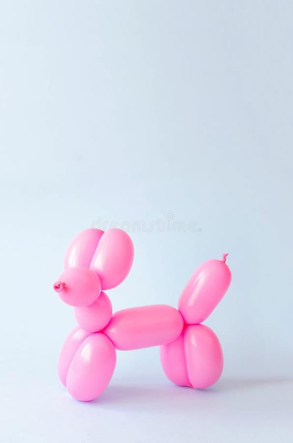 Μπαλόνι υπό μορφή σκυλιού σε ένα μπλε υπόβαθρο στοκ εικόνα
