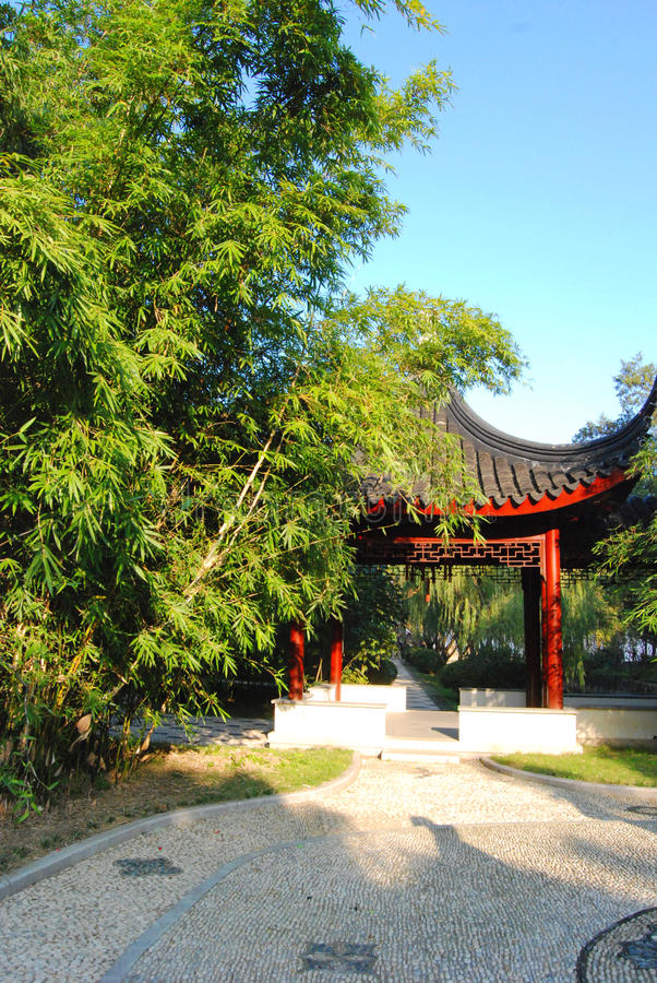 Μπαμπού σε έναν κήπο παραδοσιακού κινέζικου στοκ φωτογραφίες με δικαίωμα ελεύθερης χρήσης