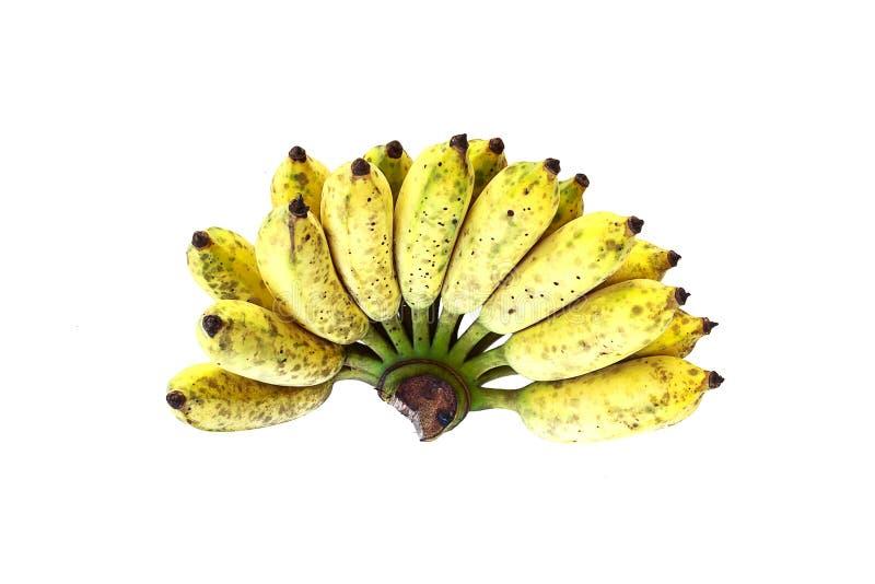 Download μπανάνα Ταϊλανδός στοκ εικόνα. εικόνα από nutrients, καρποί - 62715475