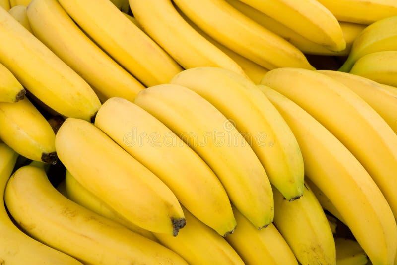 μπανάνες ανασκόπησης πολ&lam στοκ εικόνα