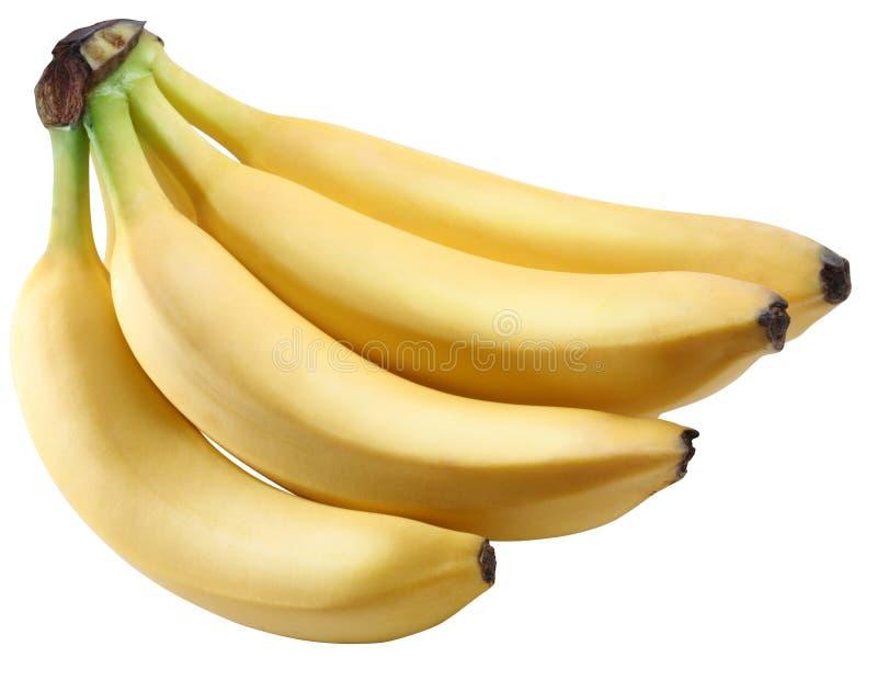 Μπανάνες που απομονώνονται στην άσπρη ανασκόπηση στοκ φωτογραφία με δικαίωμα ελεύθερης χρήσης