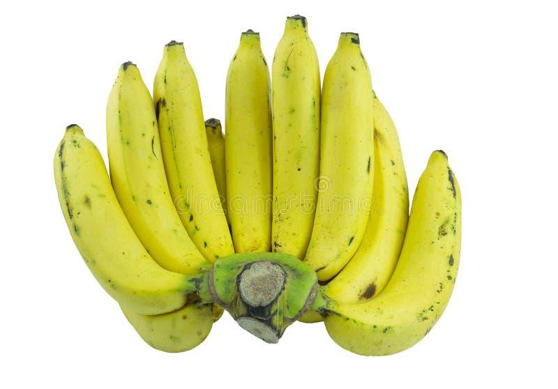 μπανάνες ώριμες στοκ εικόνες