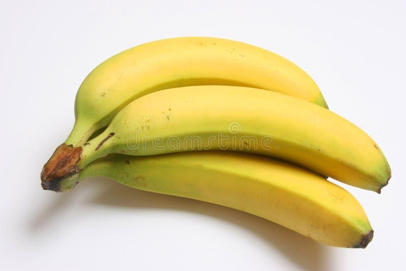 μπανάνες ms01 στοκ φωτογραφία