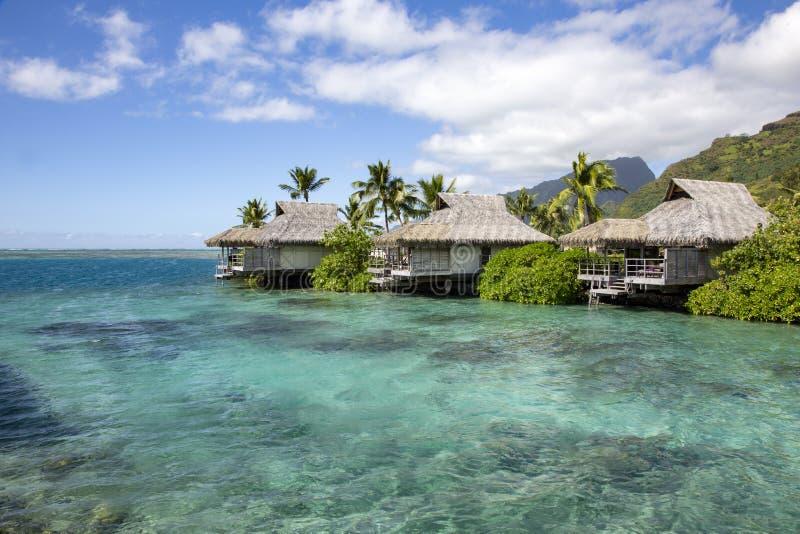 Μπανγκαλόου της Ταϊτή στοκ φωτογραφία