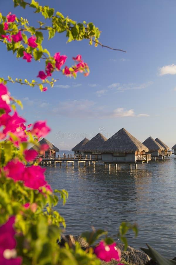 Μπανγκαλόου Overwater στο ξενοδοχείο LE Meridien Ταϊτή, Pape'ete, Ταϊτή, γαλλική Πολυνησία στοκ φωτογραφίες