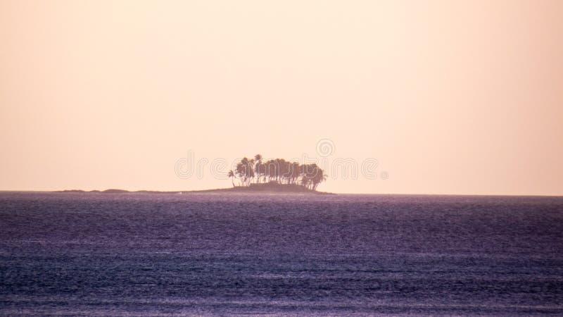 Μπαχάμες: Απομονωμένο νησί με τα τροπικά δέντρα στοκ φωτογραφία