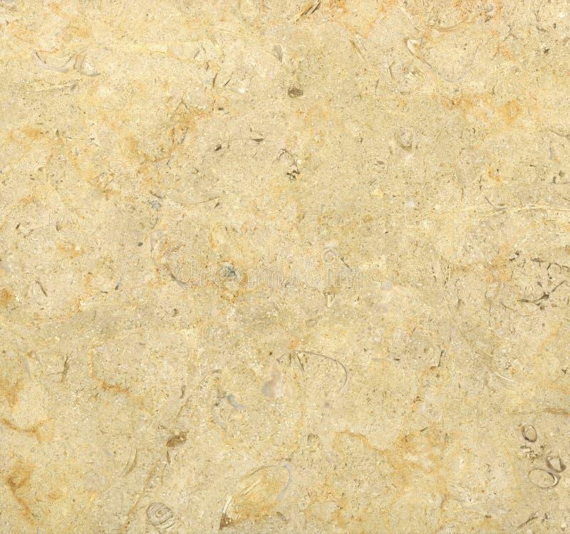 μπεζ μαρμάρινη πέτρα πλακών στοκ φωτογραφία με δικαίωμα ελεύθερης χρήσης