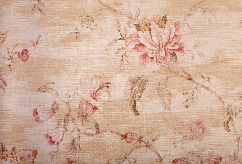 Μπεζ shabby ταπετσαρία με το floral σχέδιο στοκ φωτογραφίες