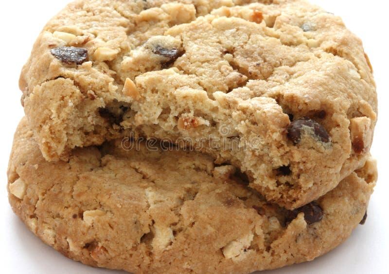 μπισκότα δύο σοκολάτας τ&si στοκ φωτογραφία