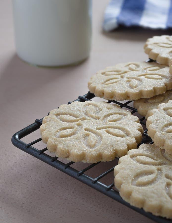 Μπισκότα κουλουρακιών στοκ φωτογραφία με δικαίωμα ελεύθερης χρήσης