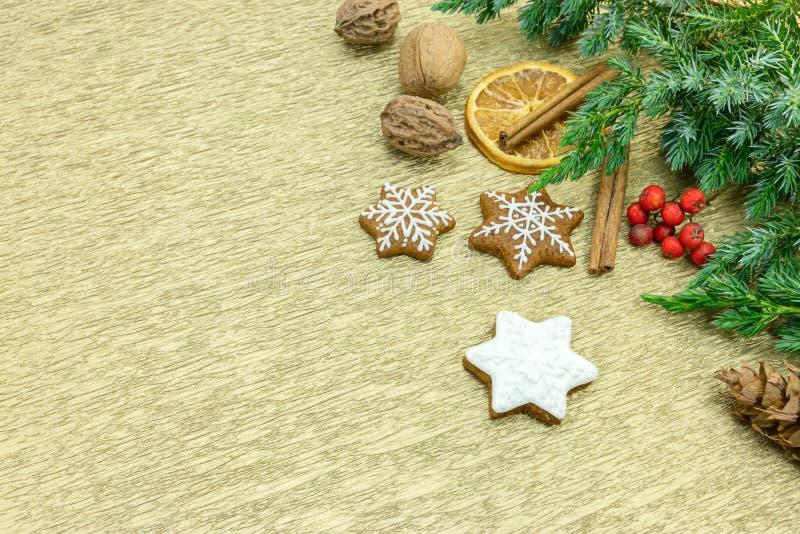 Μπισκότα μελοψωμάτων με τους κλάδους δέντρων έλατου, το καρύκευμα και το κόκκινο berrie στοκ φωτογραφία με δικαίωμα ελεύθερης χρήσης