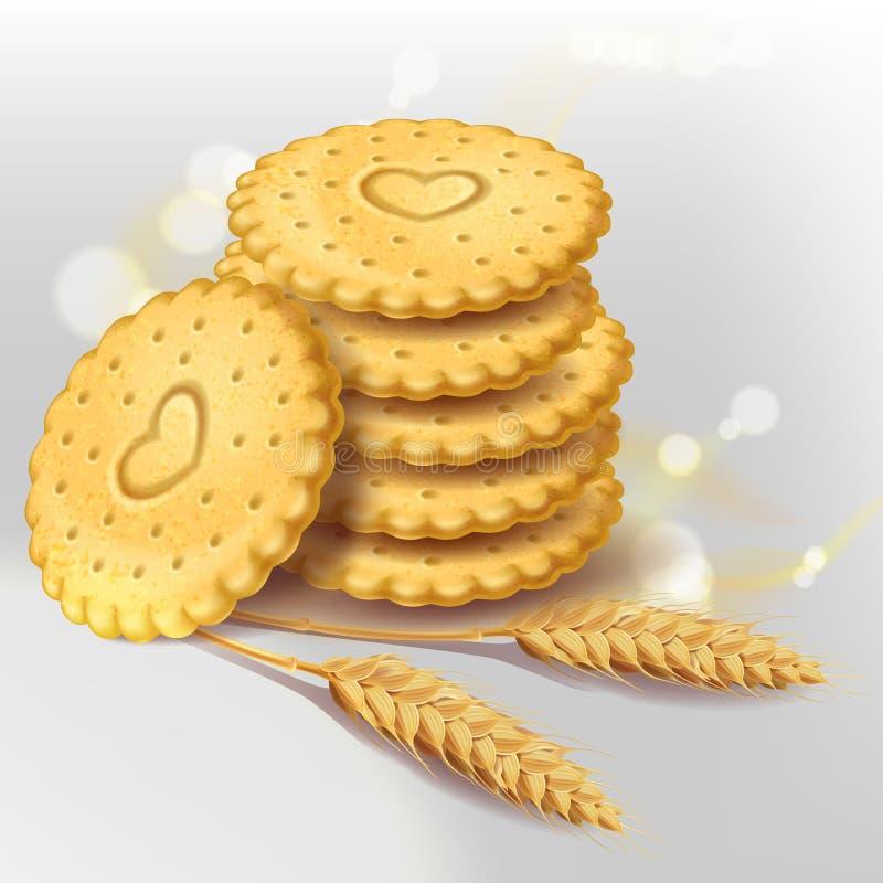 Μπισκότα μπισκότων ή ολόκληρη κροτίδα σίτου διανυσματική απεικόνιση
