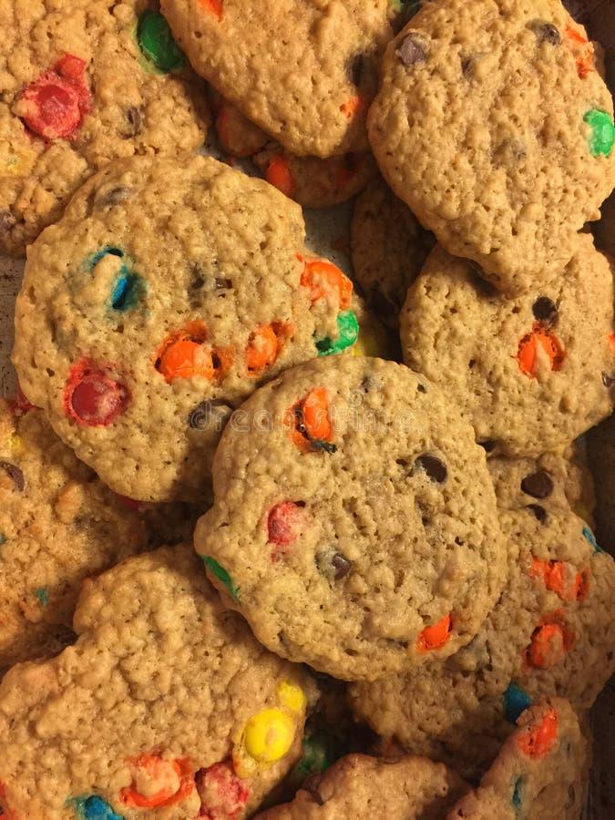 Μπισκότα τεράτων στοκ εικόνα