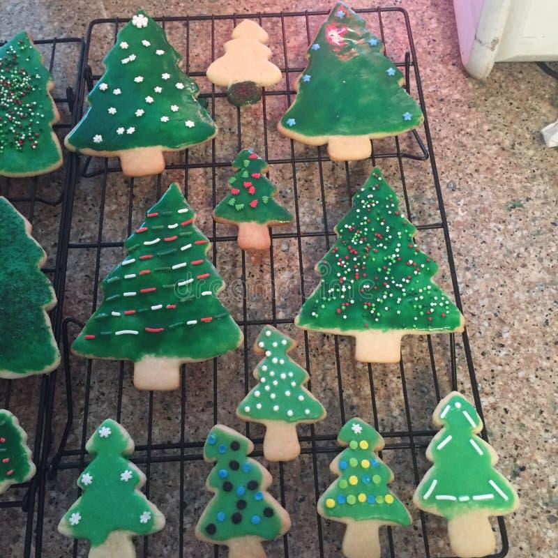 Μπισκότα χριστουγεννιάτικων δέντρων στοκ εικόνα