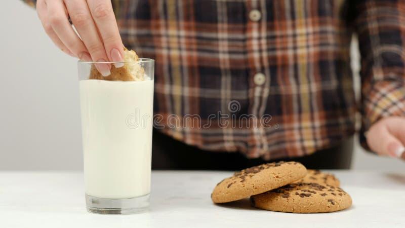 Μπισκότο γυναικών που βυθίζει το θερμό πρόχειρο φαγητό γάλακτος στοκ φωτογραφία