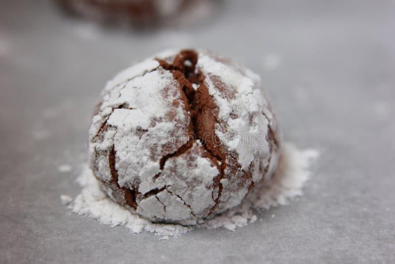 Μπισκότο μελοψωμάτων σοκολάτας στοκ εικόνες
